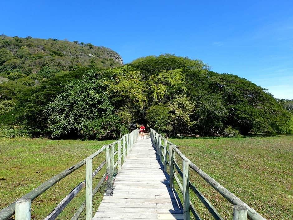 parco Palo Verde